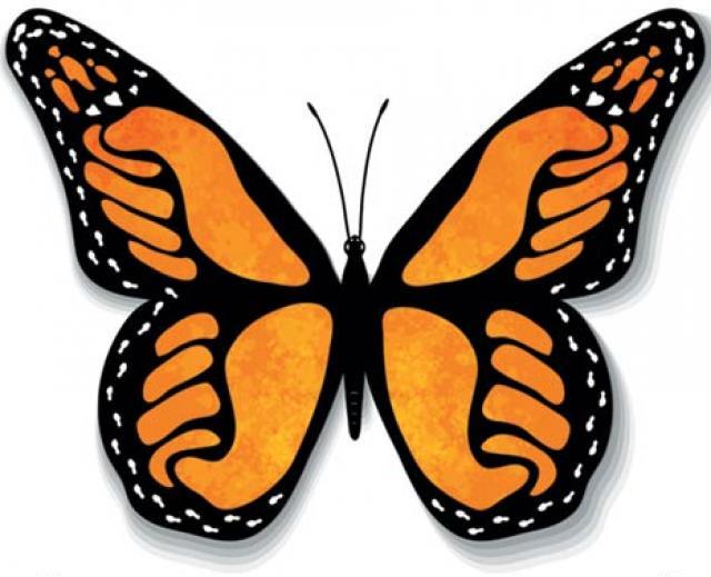 Power Butterfly